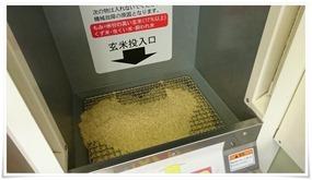 玄米と投入@クボタクリーン精米機